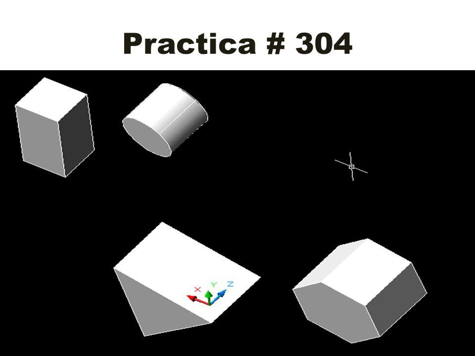 Practica # 304