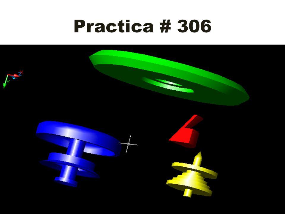Practica # 306