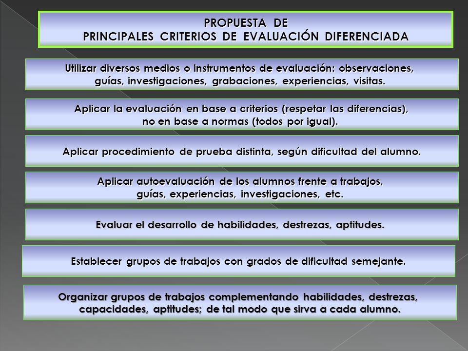 PROPUESTA DE PRINCIPALES CRITERIOS DE EVALUACIÓN DIFERENCIADA Utilizar diversos medios o instrumentos de evaluación: observaciones, guías, investigaciones, grabaciones, experiencias, visitas.