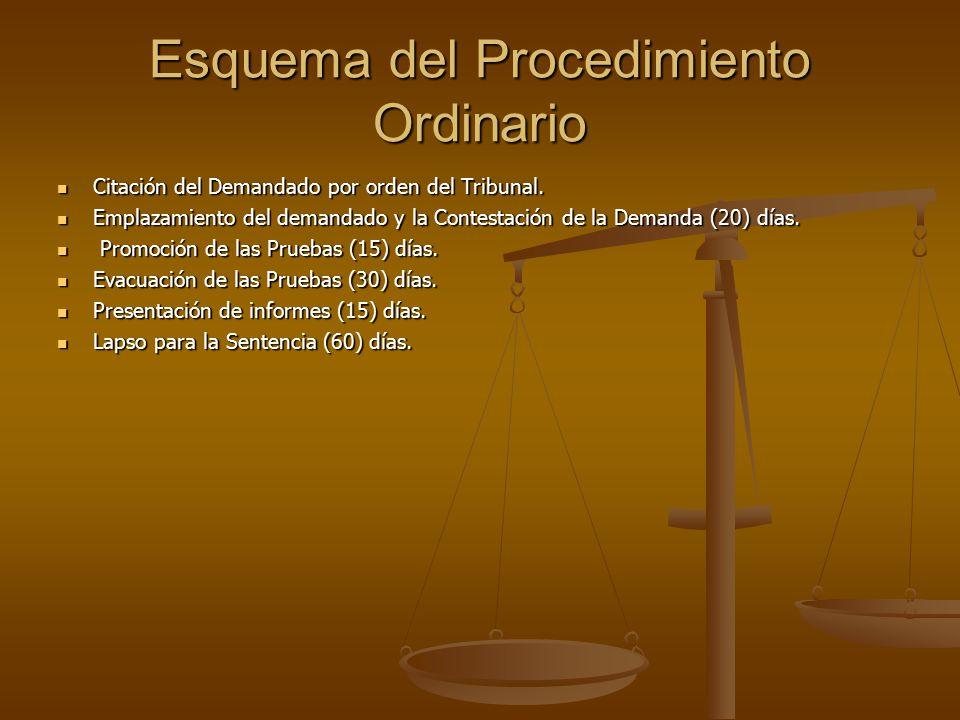 Esquema del Procedimiento Ordinario Citación del Demandado por orden del Tribunal.