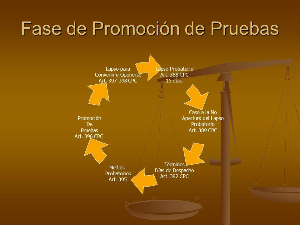 Fase de Promoción de Pruebas Lapso Probatorio Art.