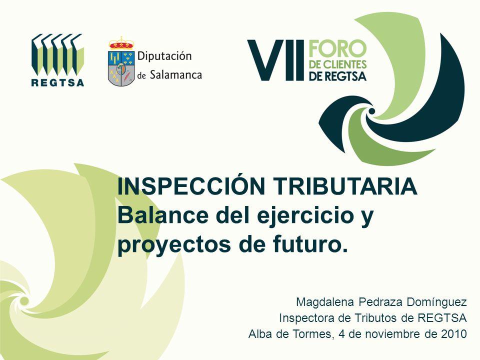 INSPECCIÓN TRIBUTARIA Balance del ejercicio y proyectos de futuro.