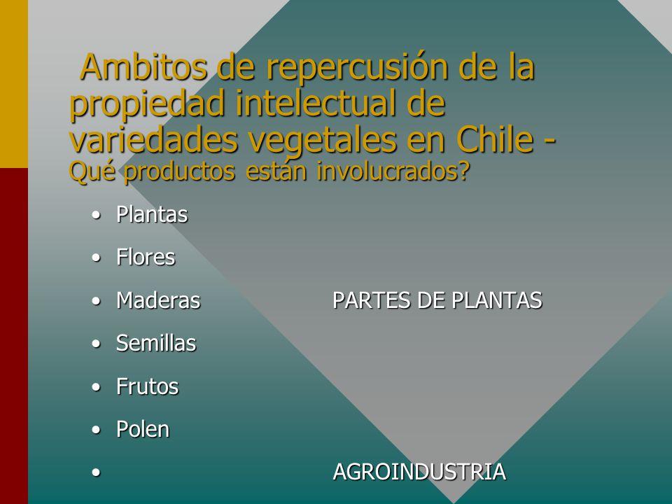 Ambitos de repercusión de la propiedad intelectual de variedades vegetales en Chile - Qué productos están involucrados.