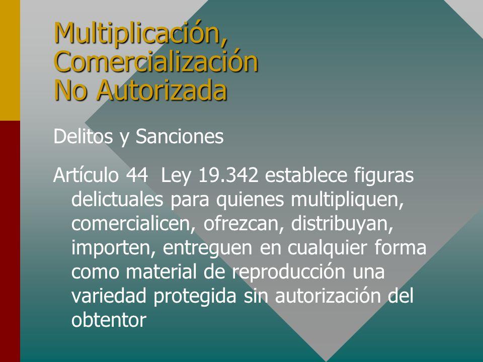 Multiplicación, Comercialización No Autorizada Delitos y Sanciones Artículo 44 Ley 19.342 establece figuras delictuales para quienes multipliquen, comercialicen, ofrezcan, distribuyan, importen, entreguen en cualquier forma como material de reproducción una variedad protegida sin autorización del obtentor