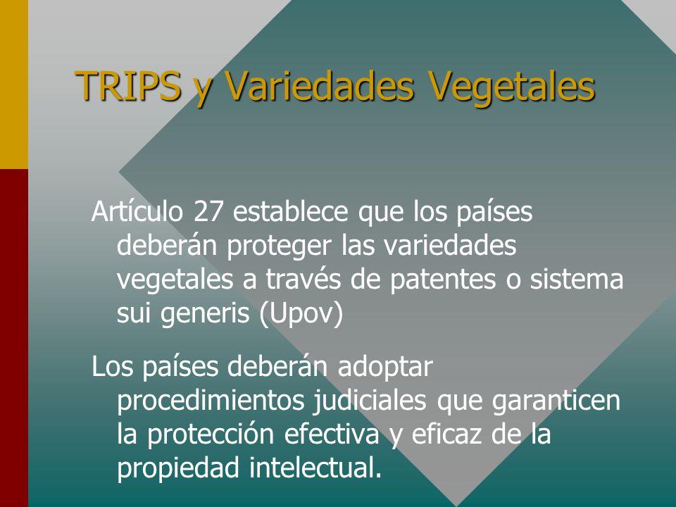 TRIPS y Variedades Vegetales Artículo 27 establece que los países deberán proteger las variedades vegetales a través de patentes o sistema sui generis (Upov) Los países deberán adoptar procedimientos judiciales que garanticen la protección efectiva y eficaz de la propiedad intelectual.