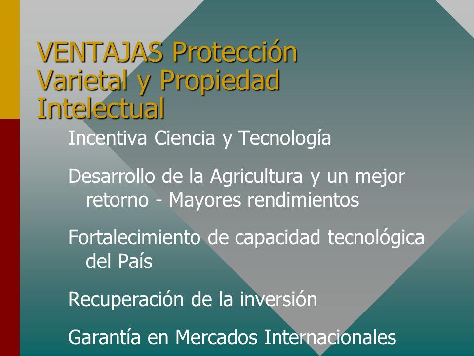 VENTAJAS Protección Varietal y Propiedad Intelectual Incentiva Ciencia y Tecnología Desarrollo de la Agricultura y un mejor retorno - Mayores rendimientos Fortalecimiento de capacidad tecnológica del País Recuperación de la inversión Garantía en Mercados Internacionales