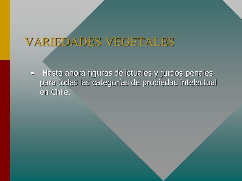 VARIEDADES VEGETALES Hasta ahora figuras delictuales y juicios penales para todas las categorías de propiedad intelectual en Chile.