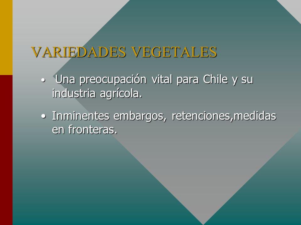 VARIEDADES VEGETALES Una preocupación vital para Chile y su industria agrícola.