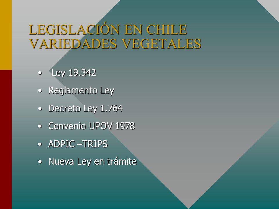 LEGISLACIÓN EN CHILE VARIEDADES VEGETALES Ley 19.342 Ley 19.342 Reglamento LeyReglamento Ley Decreto Ley 1.764Decreto Ley 1.764 Convenio UPOV 1978Convenio UPOV 1978 ADPIC –TRIPSADPIC –TRIPS Nueva Ley en trámiteNueva Ley en trámite