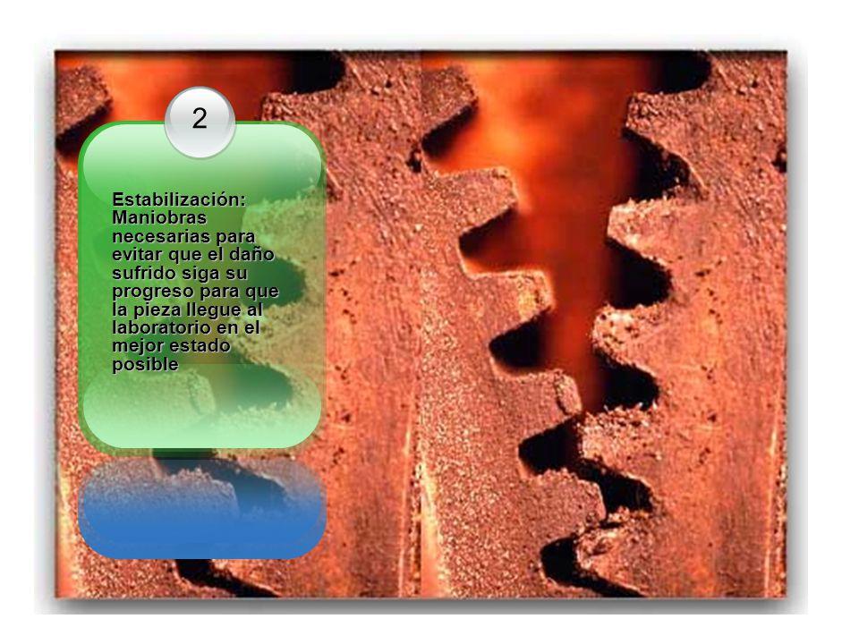 2 Estabilización: Maniobras necesarias para evitar que el daño sufrido siga su progreso para que la pieza llegue al laboratorio en el mejor estado posible Estabilización: Maniobras necesarias para evitar que el daño sufrido siga su progreso para que la pieza llegue al laboratorio en el mejor estado posible