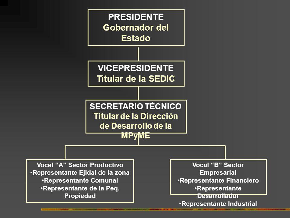 PRESIDENTE Gobernador del Estado VICEPRESIDENTE Titular de la SEDIC SECRETARIO TÉCNICO Titular de la Dirección de Desarrollo de la MPyME Vocal A Sector Productivo Representante Ejidal de la zona Representante Comunal Representante de la Peq.