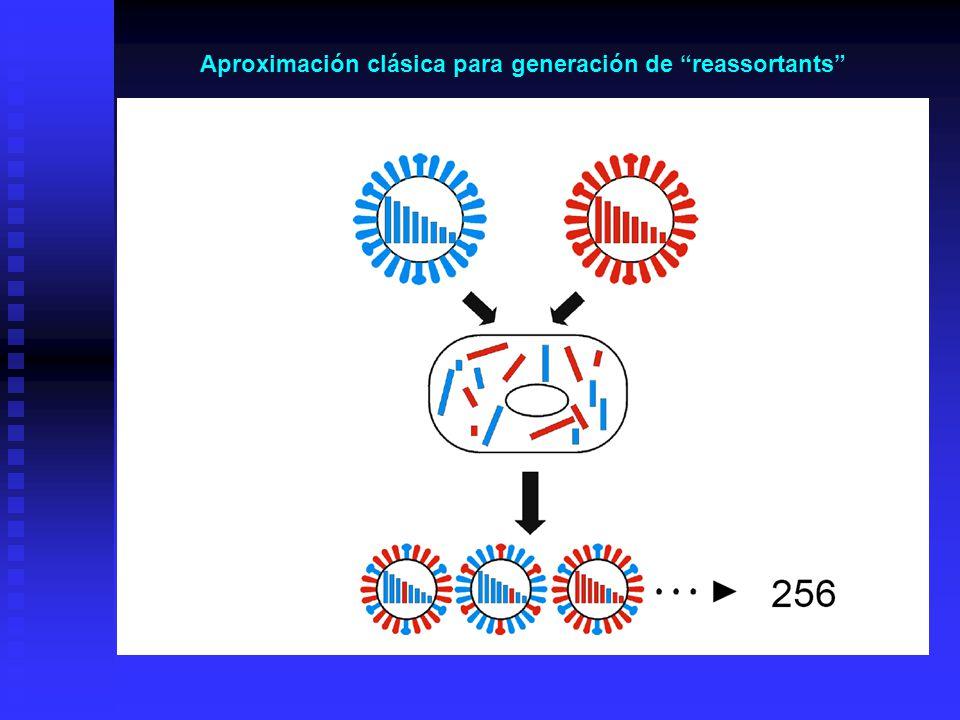 Aproximación clásica para generación de reassortants