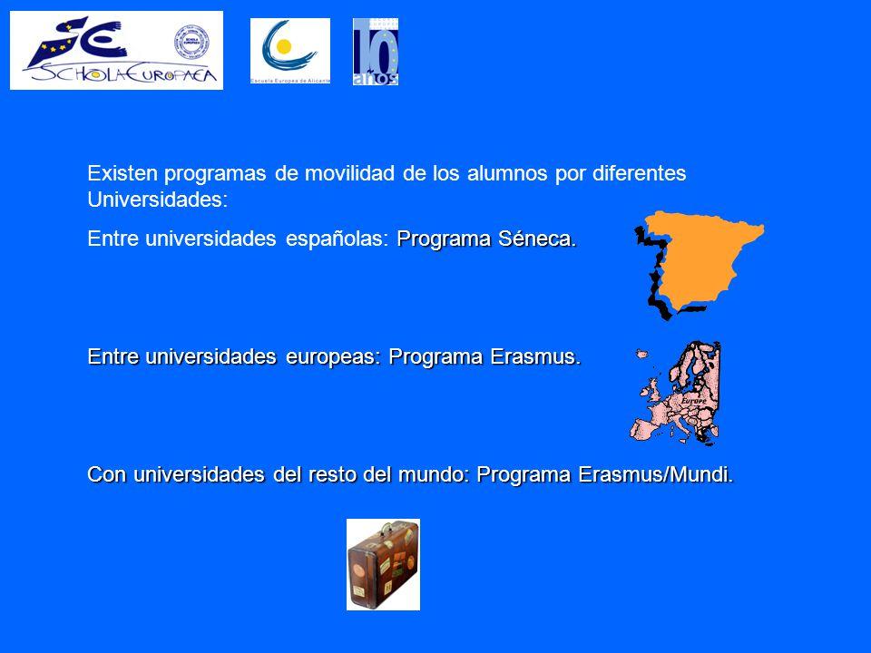 Existen programas de movilidad de los alumnos por diferentes Universidades: Programa Séneca.