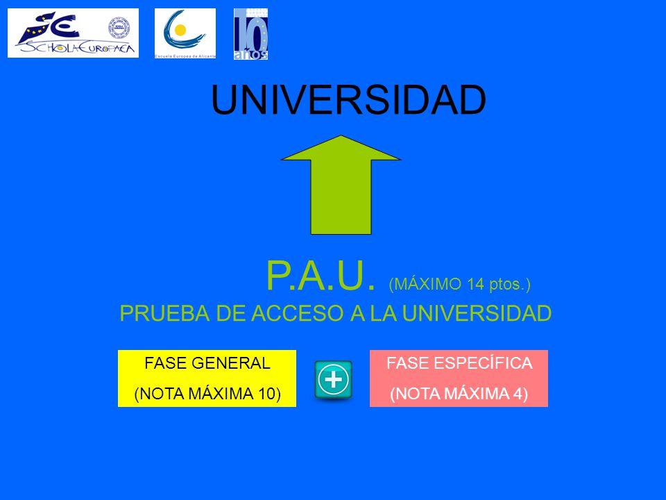 UNIVERSIDAD P.A.U.