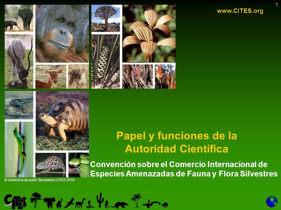 1 Papel y funciones de la Autoridad Científica www.CITES.org © Derechos de autor Secretaría CITES 2010 Convención sobre el Comercio Internacional de Especies Amenazadas de Fauna y Flora Silvestres