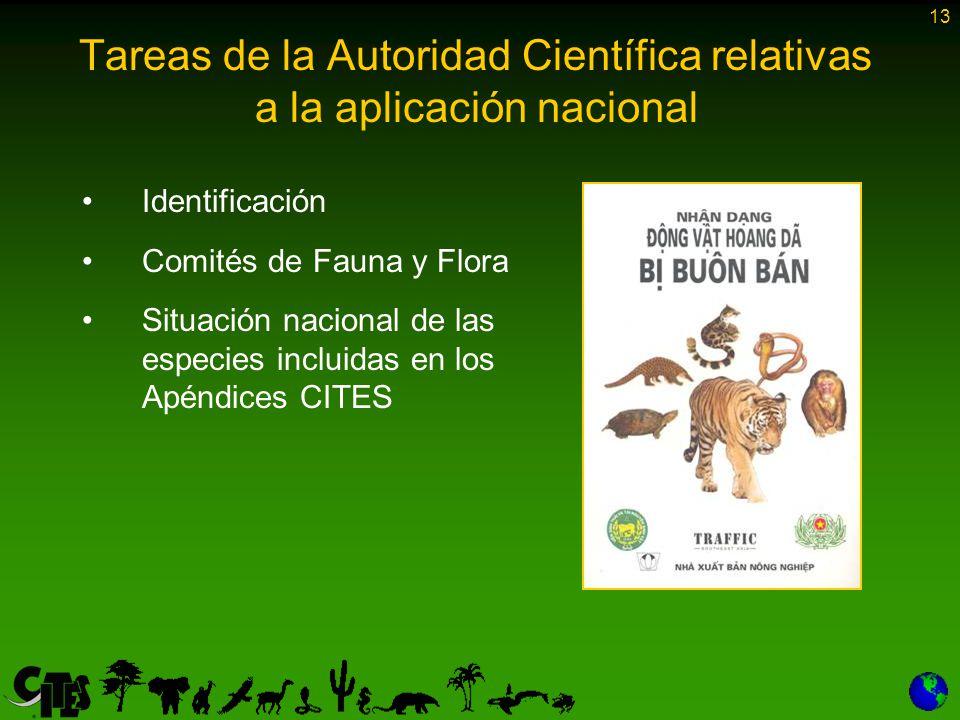 13 Tareas de la Autoridad Científica relativas a la aplicación nacional Identificación Comités de Fauna y Flora Situación nacional de las especies incluidas en los Apéndices CITES