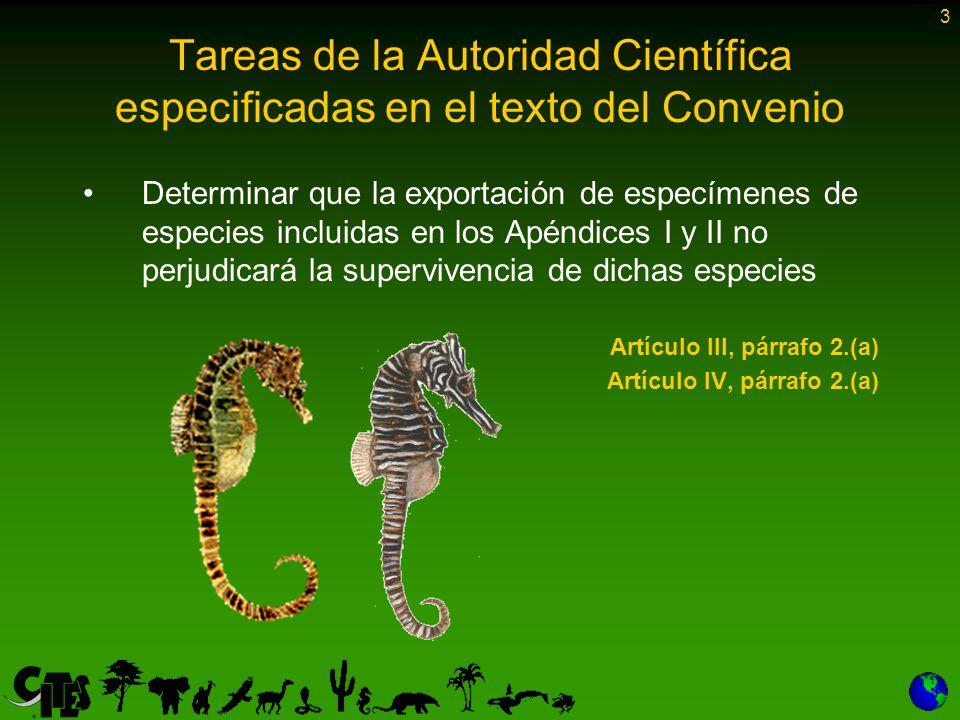 3 Tareas de la Autoridad Científica especificadas en el texto del Convenio Determinar que la exportación de especímenes de especies incluidas en los Apéndices I y II no perjudicará la supervivencia de dichas especies Artículo III, párrafo 2.(a) Artículo IV, párrafo 2.(a)