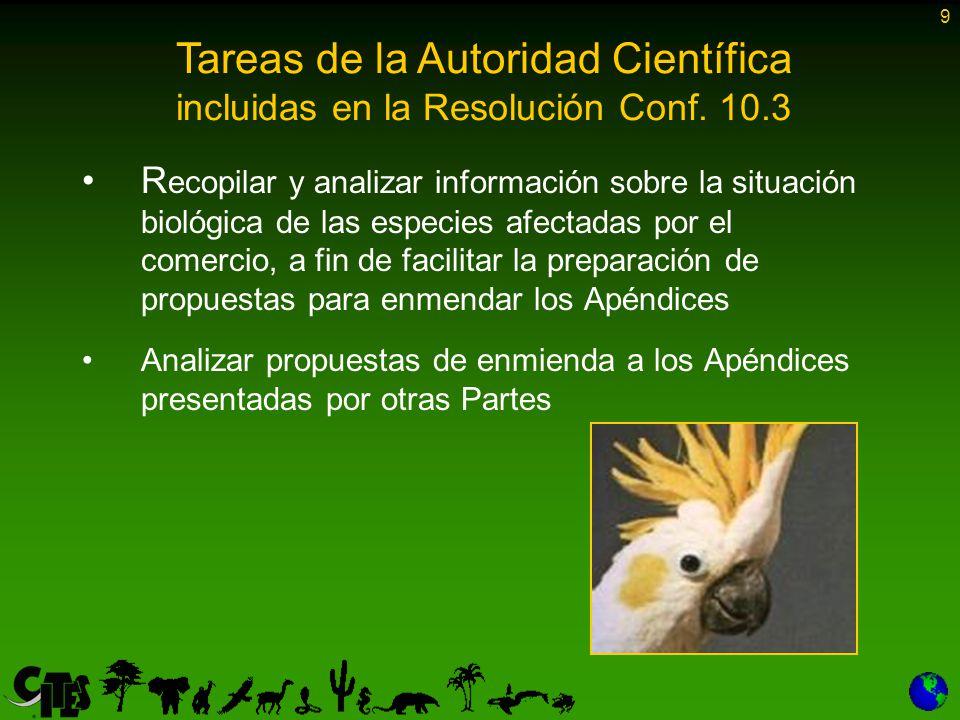 9 R ecopilar y analizar información sobre la situación biológica de las especies afectadas por el comercio, a fin de facilitar la preparación de propuestas para enmendar los Apéndices Analizar propuestas de enmienda a los Apéndices presentadas por otras Partes Tareas de la Autoridad Científica incluidas en la Resolución Conf.