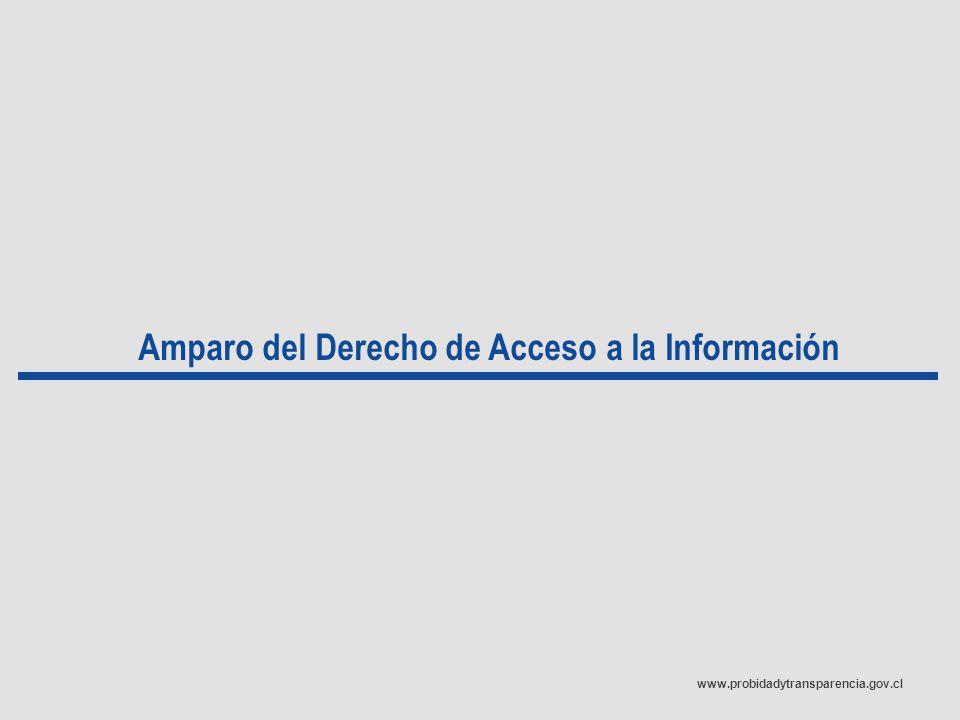 www.probidadytransparencia.gov.cl Amparo del Derecho de Acceso a la Información