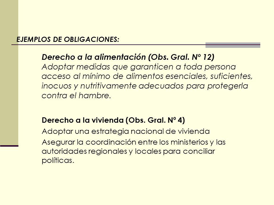 EJEMPLOS DE OBLIGACIONES: Derecho a la alimentación (Obs.