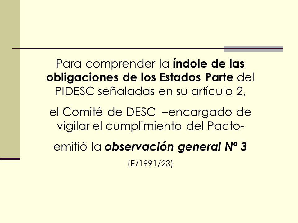 Para comprender la índole de las obligaciones de los Estados Parte del PIDESC señaladas en su artículo 2, el Comité de DESC –encargado de vigilar el cumplimiento del Pacto- emitió la observación general Nº 3 (E/1991/23)
