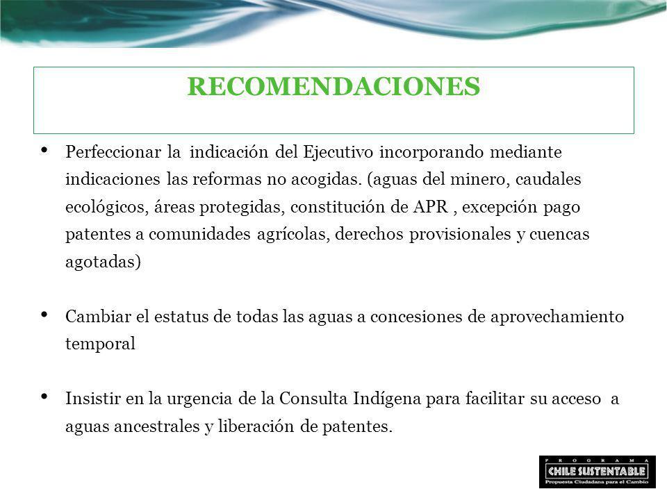 RECOMENDACIONES Perfeccionar la indicación del Ejecutivo incorporando mediante indicaciones las reformas no acogidas.