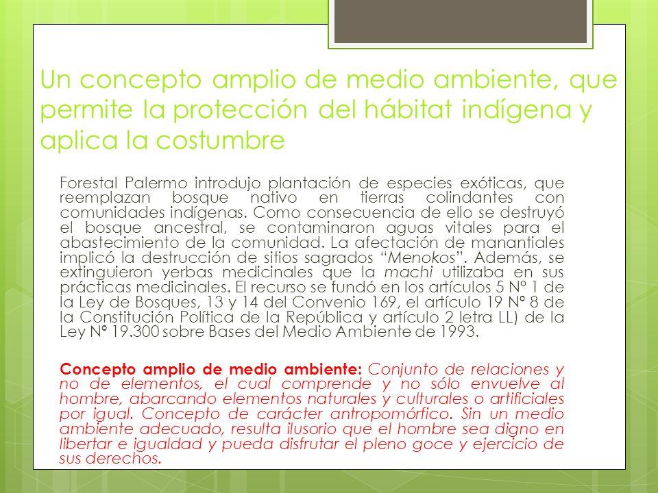 Un concepto amplio de medio ambiente, que permite la protección del hábitat indígena y aplica la costumbre Forestal Palermo introdujo plantación de especies exóticas, que reemplazan bosque nativo en tierras colindantes con comunidades indígenas.