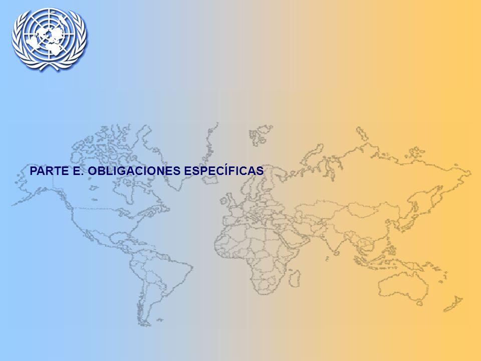 PARTE E. OBLIGACIONES ESPECÍFICAS