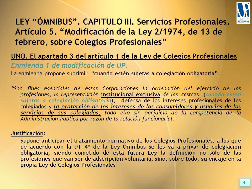 LEY ÓMNIBUS . CAPITULO III. Servicios Profesionales.