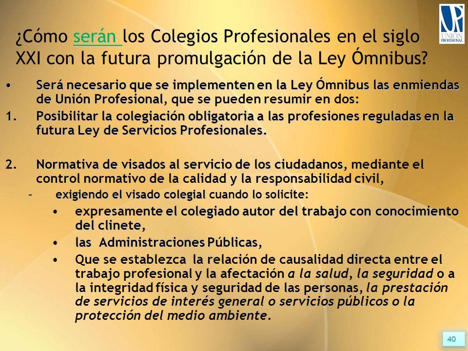 serán ¿Cómo serán los Colegios Profesionales en el siglo XXI con la futura promulgación de la Ley Ómnibus.