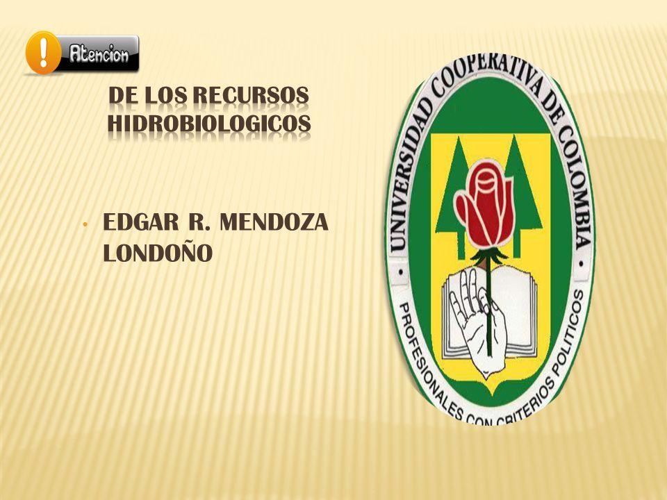 EDGAR R. MENDOZA LONDOÑO