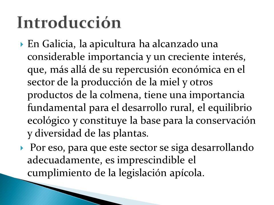  En Galicia, la apicultura ha alcanzado una considerable importancia y un creciente interés, que, más allá de su repercusión económica en el sector de la producción de la miel y otros productos de la colmena, tiene una importancia fundamental para el desarrollo rural, el equilibrio ecológico y constituye la base para la conservación y diversidad de las plantas.