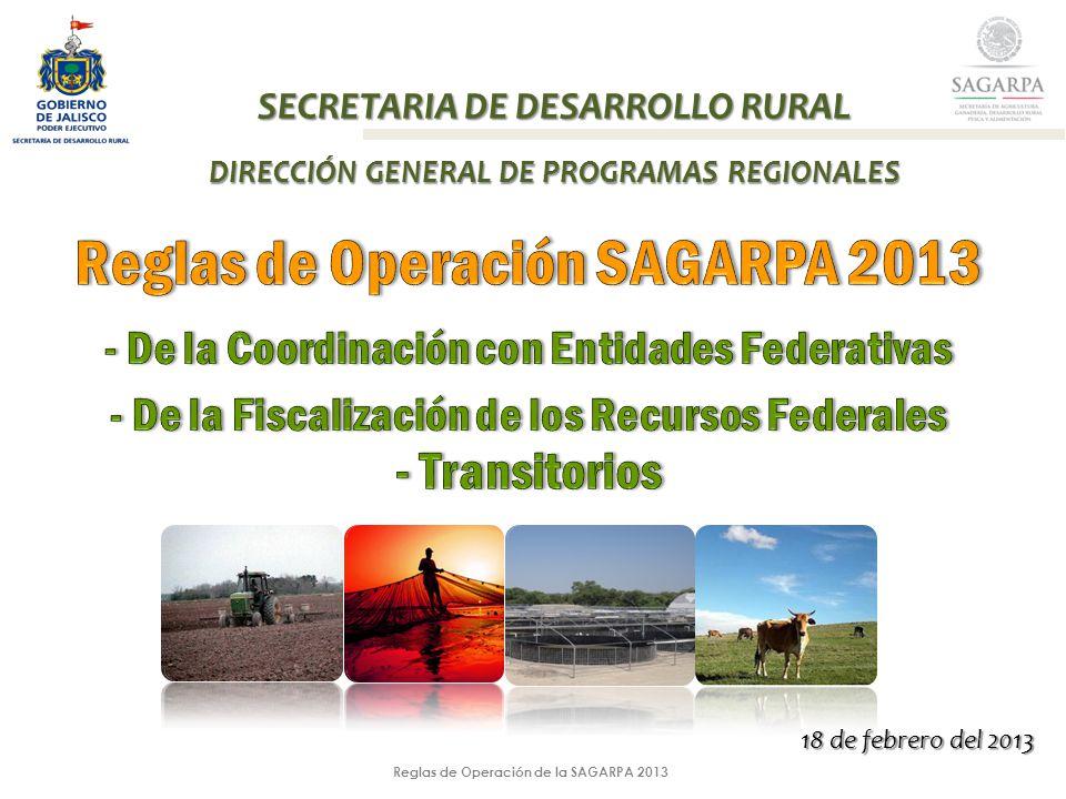 Reglas de Operación de la SAGARPA 2013 SECRETARIA DE DESARROLLO RURAL DIRECCIÓN GENERAL DE PROGRAMAS REGIONALES 18 de febrero del 2013