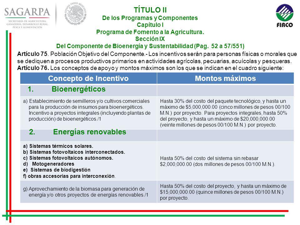 TÍTULO II De los Programas y Componentes Capítulo I Programa de Fomento a la Agricultura.