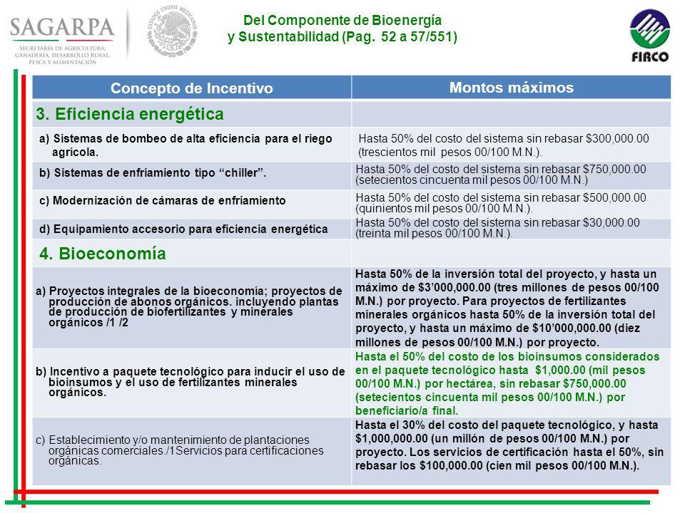 Del Componente de Bioenergía y Sustentabilidad (Pag.