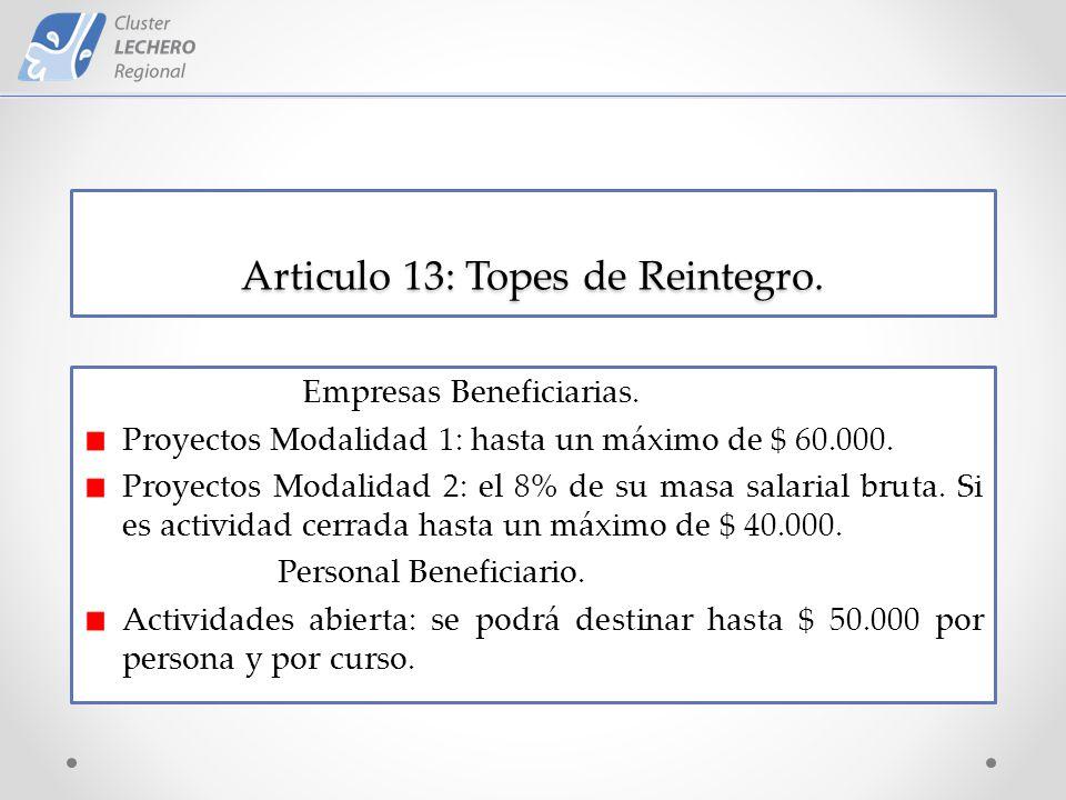 Articulo 13: Topes de Reintegro. Empresas Beneficiarias.