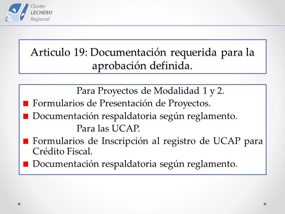 Articulo 19: Documentación requerida para la aprobación definida.