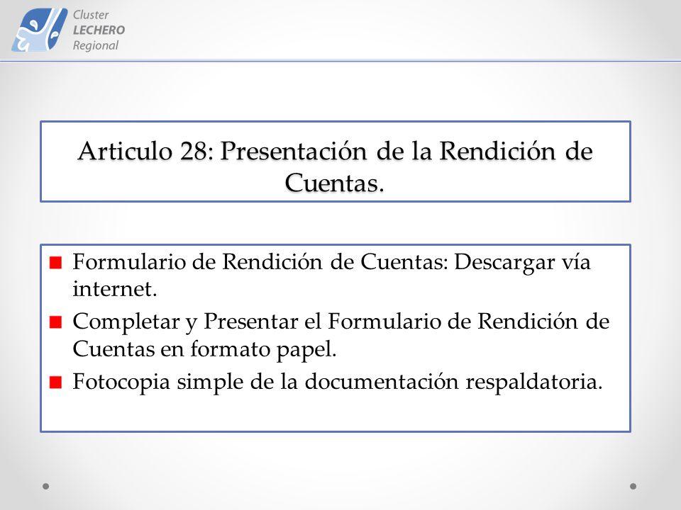 Articulo 28: Presentación de la Rendición de Cuentas.