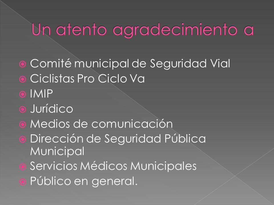  Comité municipal de Seguridad Vial  Ciclistas Pro Ciclo Va  IMIP  Jurídico  Medios de comunicación  Dirección de Seguridad Pública Municipal  Servicios Médicos Municipales  Público en general.