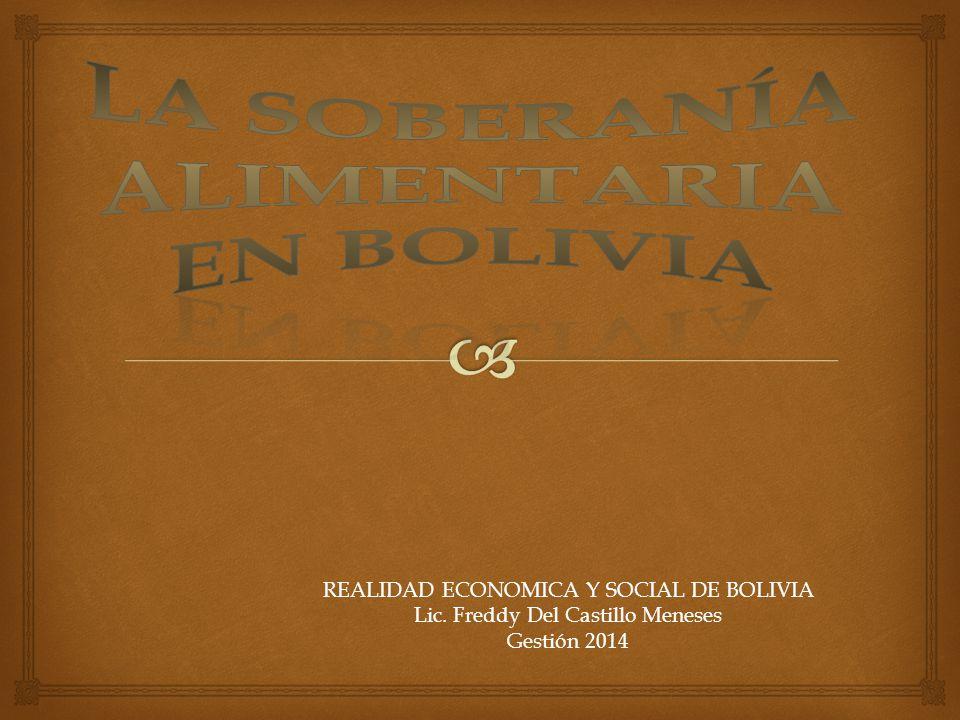 REALIDAD ECONOMICA Y SOCIAL DE BOLIVIA Lic. Freddy Del Castillo Meneses Gestión 2014