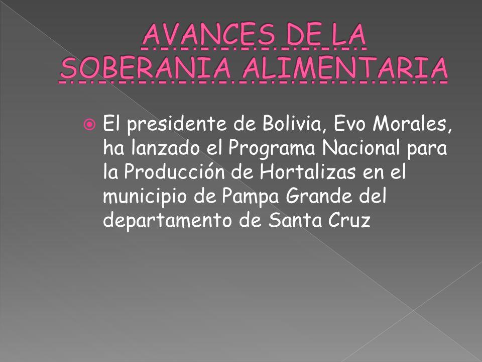  El presidente de Bolivia, Evo Morales, ha lanzado el Programa Nacional para la Producción de Hortalizas en el municipio de Pampa Grande del departamento de Santa Cruz