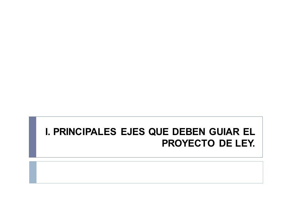I. PRINCIPALES EJES QUE DEBEN GUIAR EL PROYECTO DE LEY.