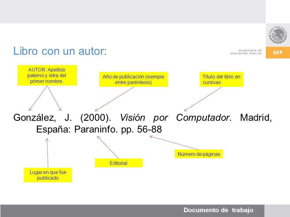 Documento de trabajo Libro con un autor: González, J.