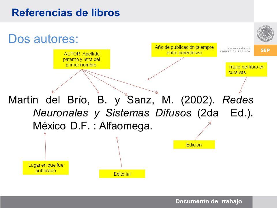 Documento de trabajo Dos autores: Martín del Brío, B.
