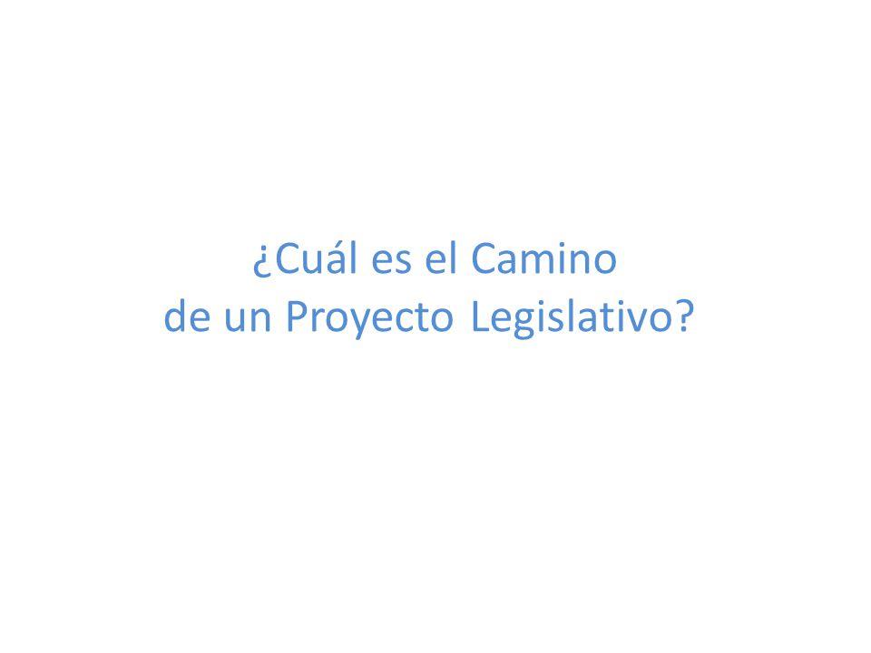 ¿Cuál es el Camino de un Proyecto Legislativo