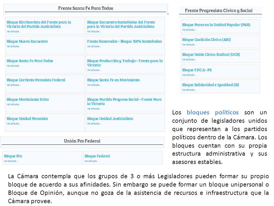 Los bloques políticos son un conjunto de legisladores unidos que representan a los partidos políticos dentro de la Cámara.