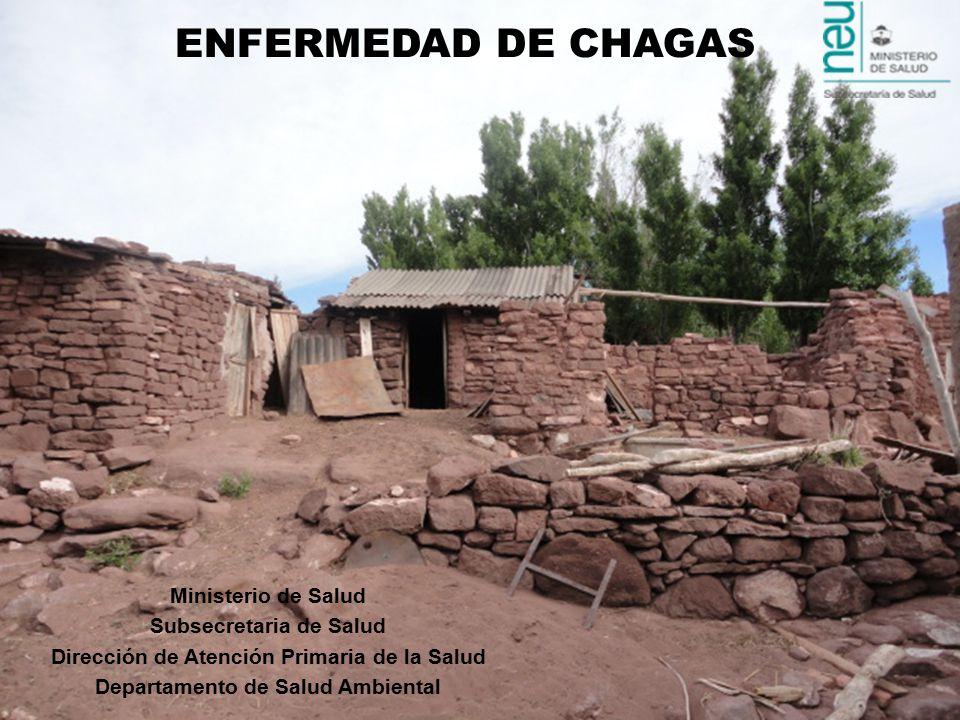Ministerio de Salud Subsecretaria de Salud Dirección de Atención Primaria de la Salud Departamento de Salud Ambiental ENFERMEDAD DE CHAGAS