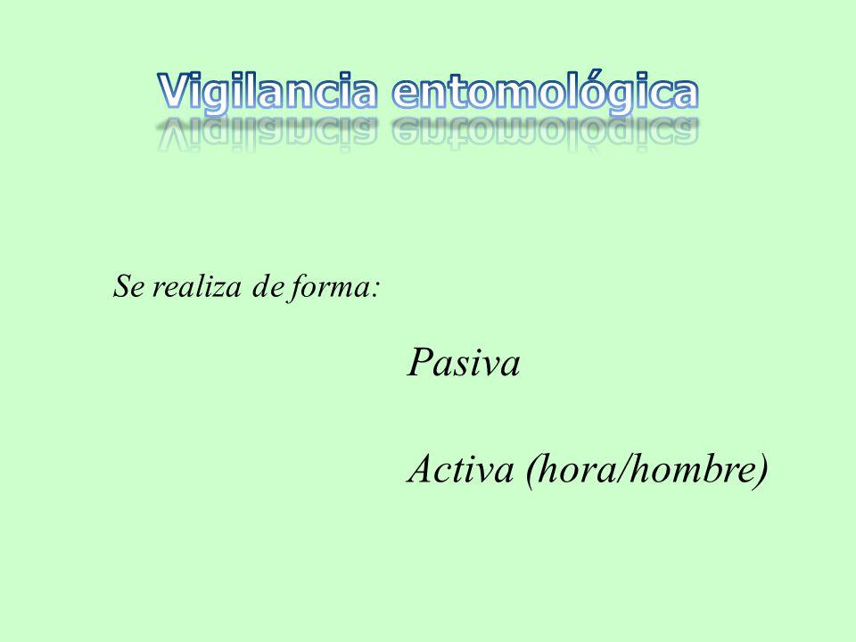 Se realiza de forma: Pasiva Activa (hora/hombre)