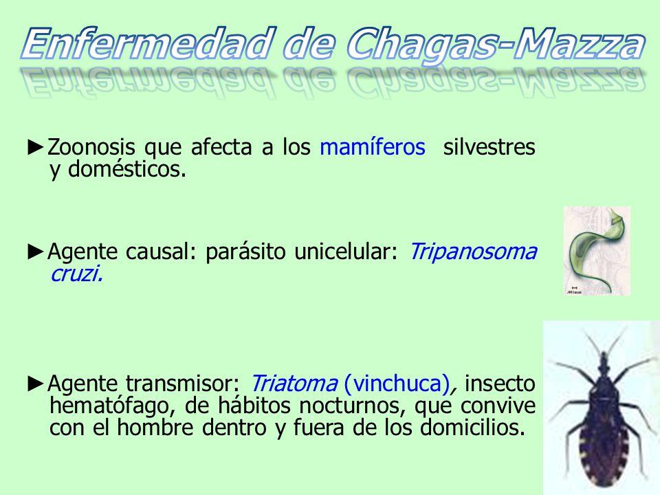 ► Zoonosis que afecta a los mamíferos silvestres y domésticos.