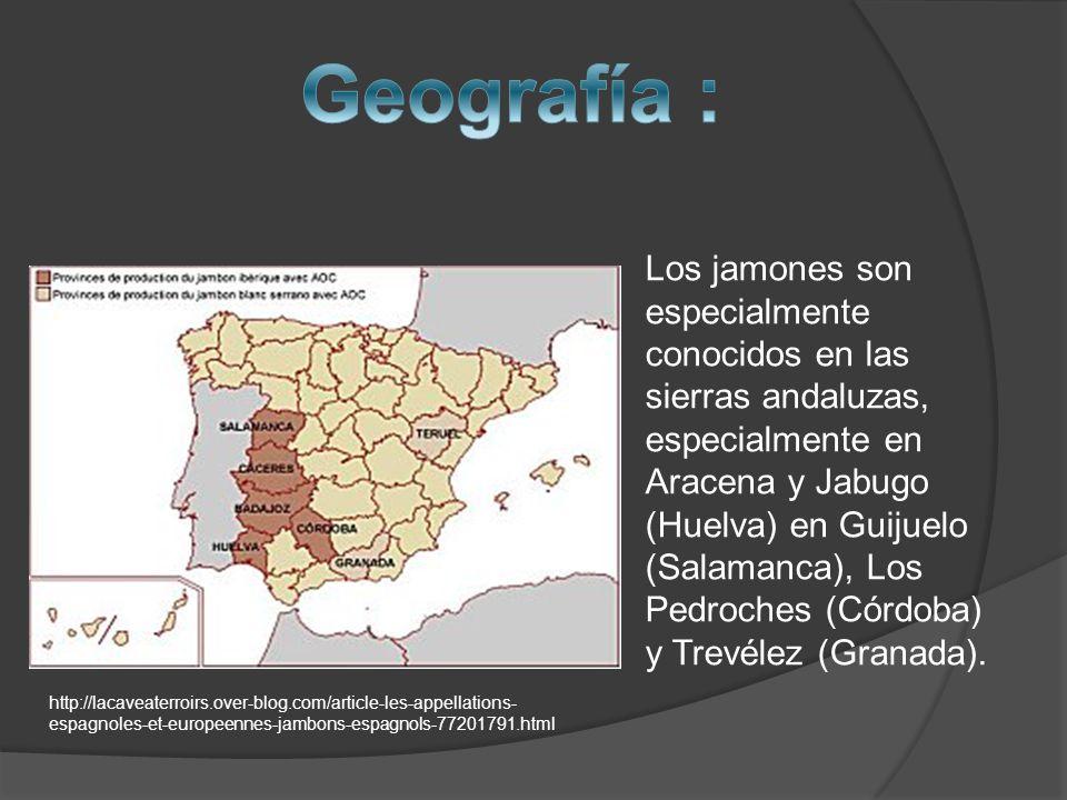 Los jamones son especialmente conocidos en las sierras andaluzas, especialmente en Aracena y Jabugo (Huelva) en Guijuelo (Salamanca), Los Pedroches (Córdoba) y Trevélez (Granada).